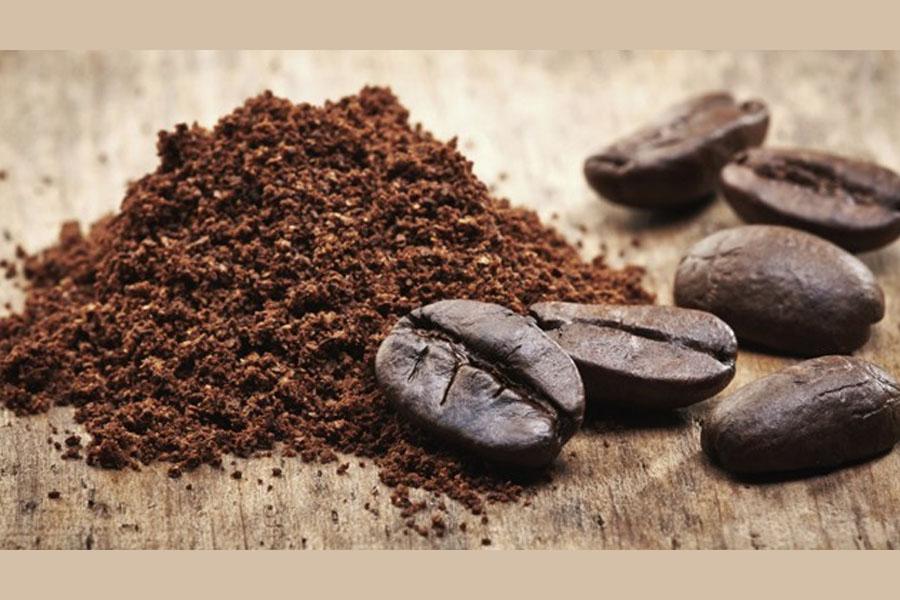 Borra de café – Sete dicas de reutilização desse pó para sua casa