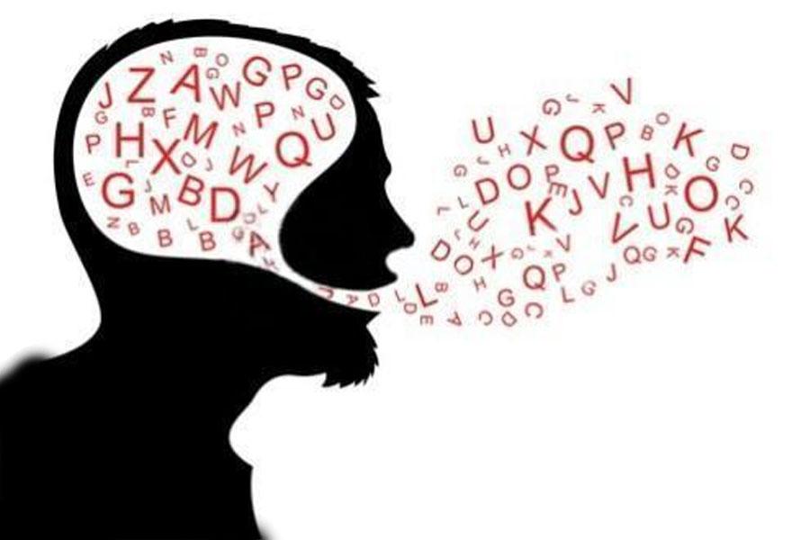 Entenda a importância de saber a divisão da gramática