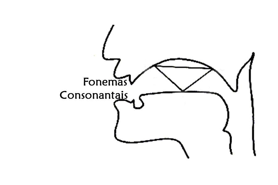 fonemas-consonantais-o-que-e-isso.jpg - Enviado em: 12/03/2018