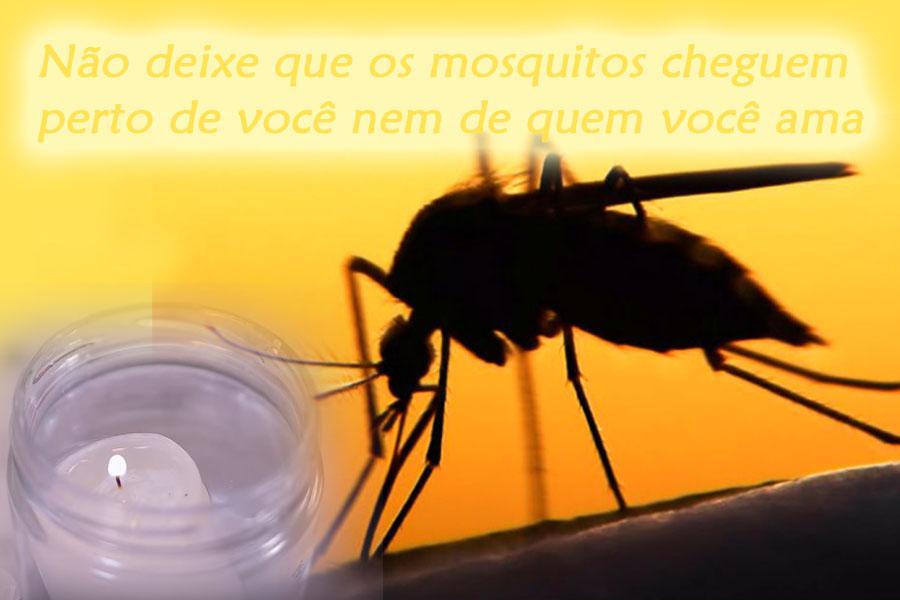 nao-deixe-que-os-mosquitos-cheguem-perto-de-voce-nem-de-quem-voce-ama.jpg - Enviado em: 10/01/2018